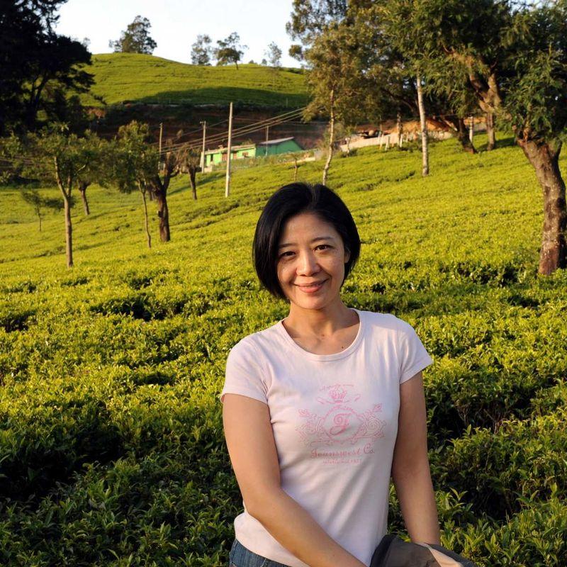 斯里兰卡茶山